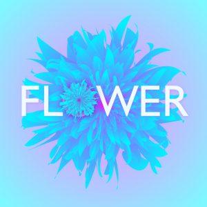woronokin's flower